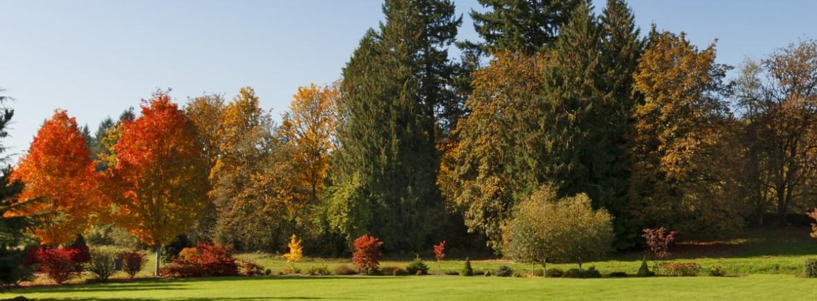 AutumnGreen autumn lawn fertiliser manufacturer supplier