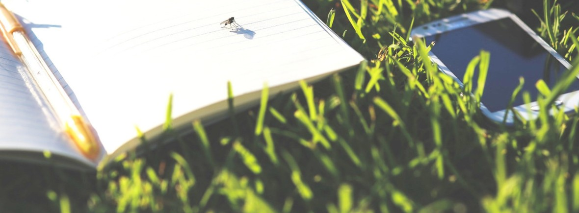 Contact SmartLawn Fertiliser Lawn Care Fertiliser Manufacturer Supplier