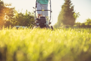 Young man mowing the grass